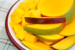 Slice mango dish Stock Images