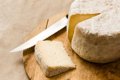 Slice of mature cheese and whole caciotta on the chopping board Stock Images