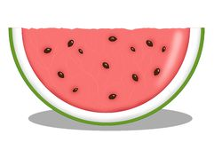 Slice of melon royalty free illustration