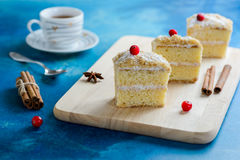 Slice of mille-feuille cake with cranberries and sweet cream stuffing Stock Images