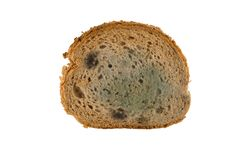Slice of moldy bread. Isolated on white background Stock Images