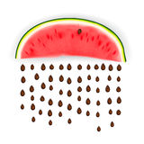 Slice of nice fresh watermelon stock image