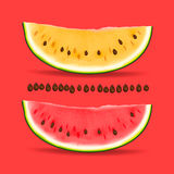 Slice of nice fresh yellow and red watermelon Stock Image