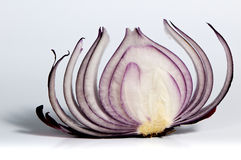 Slice Of Red Onion Royalty Free Stock Photos
