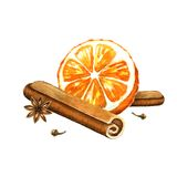 Slice of orange, cinnamon and star anise.  Royalty Free Stock Images