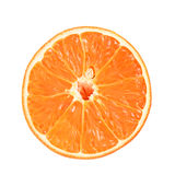Slice of orange. Stock Photo