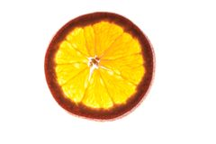 Slice of an orange  isolated on white background   back lit Royalty Free Stock Image