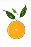 Slice of orange with leaves Stock Photo