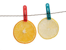 Slice of orange and lemon Royalty Free Stock Images