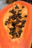Slice of papaya Stock Image