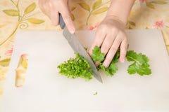 Slice parsley Stock Photos