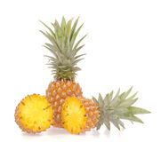 Slice pineapple Stock Images