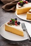 Pumpkin cheesecake with sour cream topping. A slice of pumpkin cheesecake with sour cream topping and fresh seasonal berries and nuts Stock Image