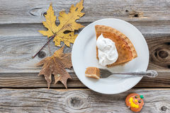 Slice of pumpkin pie on plate on old rustic wood surface. Stock Image