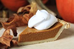 A Slice of Pumpkin Pie royalty free stock photo