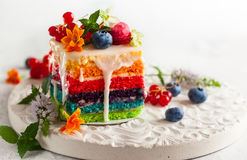 Slice of Rainbow Cake. A slice of rainbow cake decorated with fresh berries and flowers for holiday Stock Photos