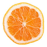 Slice of Rangpur (lemandarin) - citrus fruit, hybrid mandarin orange and lemon Royalty Free Stock Image