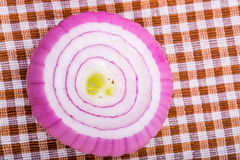 Slice of red onion Royalty Free Stock Photography
