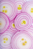 Slice red onions Royalty Free Stock Photography