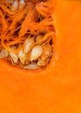Slice of ripe pumpkin Royalty Free Stock Photo