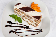 Slice of self-made italian tiramisu dessert Stock Images