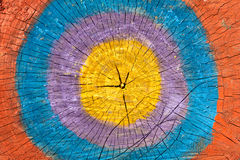 Slice stump painted colors Stock Image