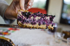 Slice of tart with blueberries Stock Photos