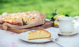 Slice of tasty freshly baked apple tart for tea Royalty Free Stock Images