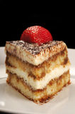 Slice of tiramisu Stock Photography