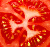 Slice of tomato Stock Photography