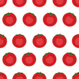 Slice tomato seamless pattern. Vector background from vegetables Stock Photos