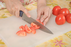 Slice tomato Royalty Free Stock Image