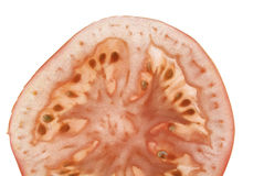 Slice of tomatoe Royalty Free Stock Photos