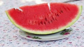 Slice water melon stock image