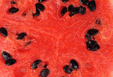 Slice of watermelon as food background Royalty Free Stock Image