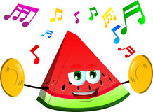 A slice of watermelon with cymbals Stock Images