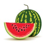 Slice and watermelon in vector Royalty Free Stock Photos