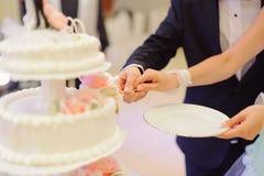 Slice of Wedding Cake. Bride and groom holding slice of wedding cake Stock Photography