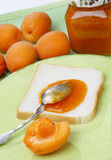 Slice of white bread with apricot jam. On table Royalty Free Stock Photos