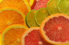 Sliced ​​citrus fruits Royalty Free Stock Photo