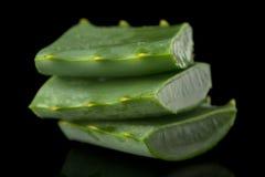 Sliced aloe leaf Stock Image