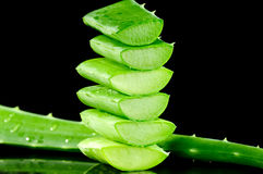 Sliced aloe leaves isolated on black Royalty Free Stock Photo