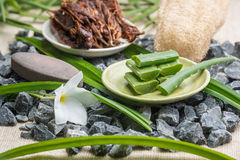 Sliced Aloe Vera leaves on plate, spa elements Royalty Free Stock Image