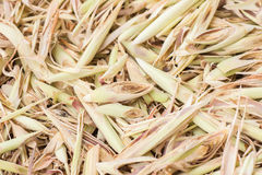 Free Sliced And Dried Lemongrass. Stock Photography - 58832122