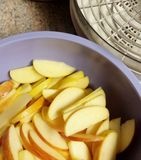 Sliced apples and dehydrator Royalty Free Stock Photo