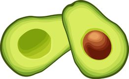 Sliced Avocado Halves. Two sliced avocado halves placed side by side. Isolated vector image on white vector illustration