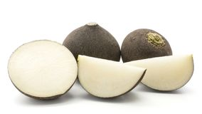 Raw black radish isolated. Sliced black radish stack isolated on white background two whole bulbs one fresh cut half and two slices Stock Image