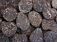 Sliced black truffes stock photo