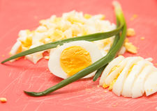 Sliced boiled egg Stock Images