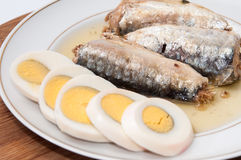 Sliced boiled egg and sardines served on the plate Stock Images